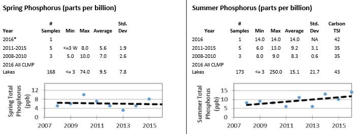 phosphorus 2017