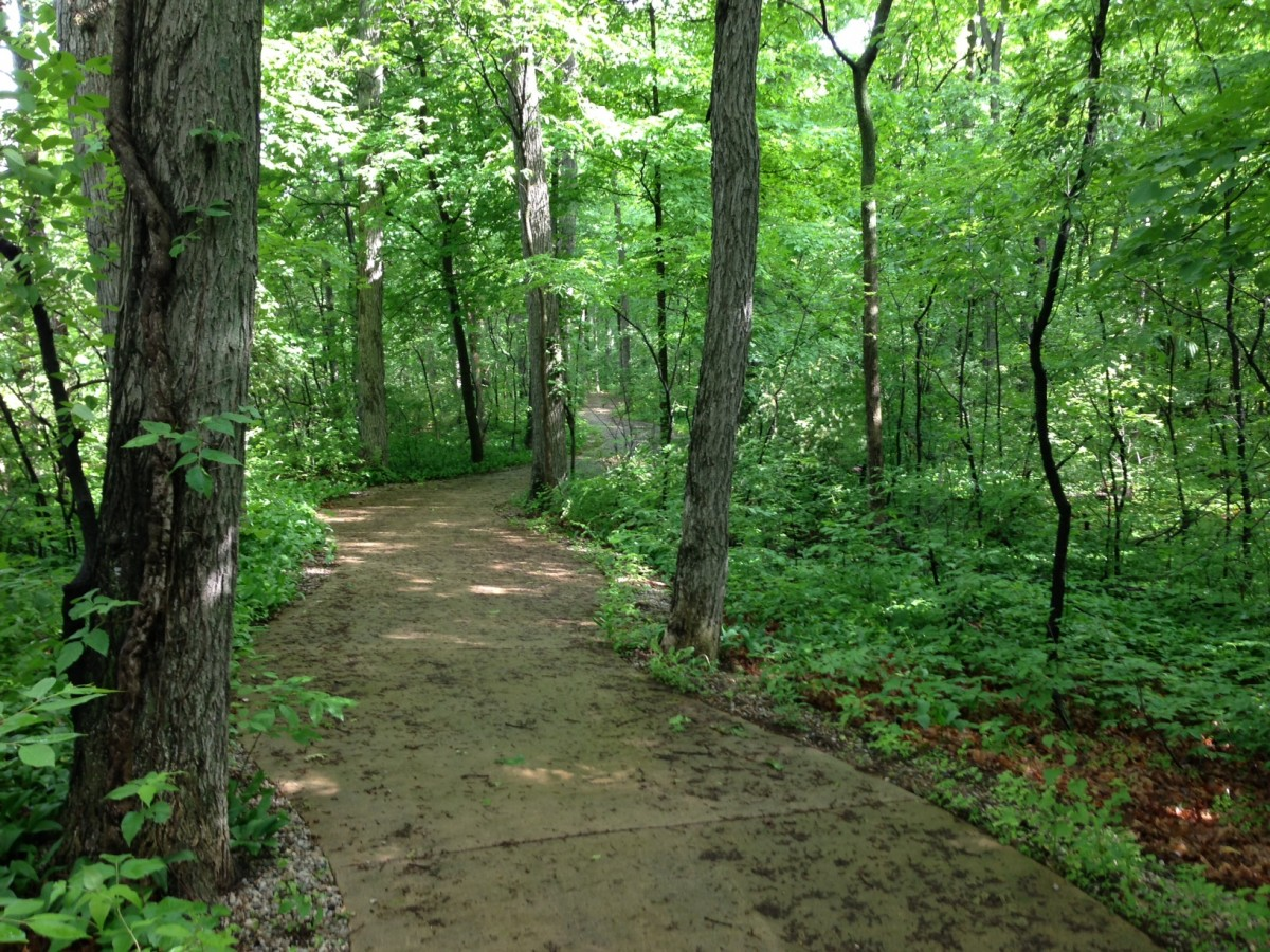 trail_images_018