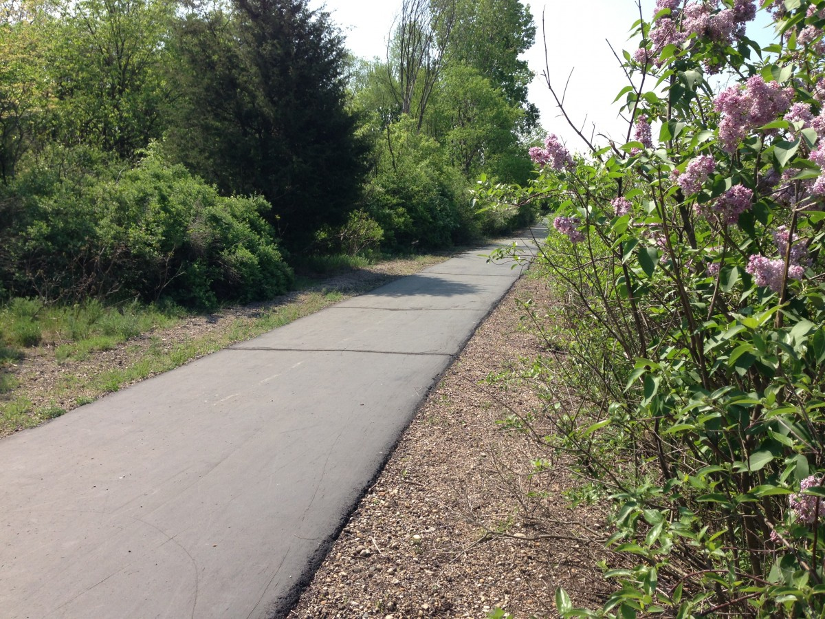 Clark Lake Spirit Trail--this section runs parallel with Hyde Road