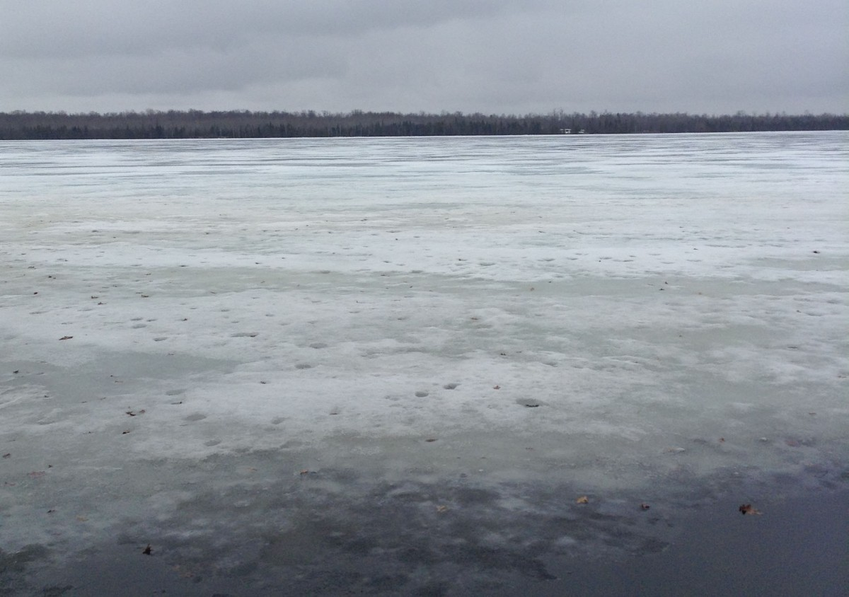 Paradise Lake near Mackinaw City