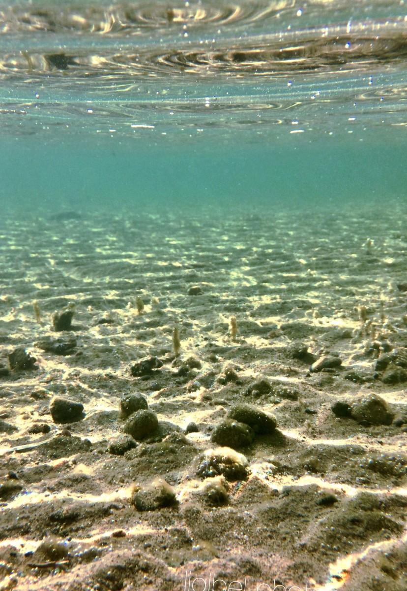 Underwater Brandi ps 2015 03-15