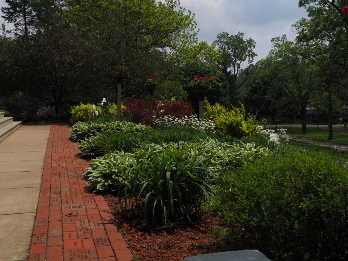 CC garden
